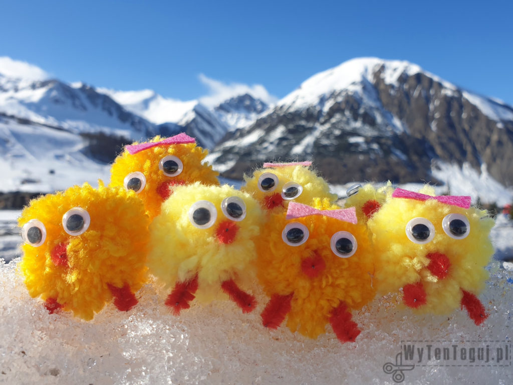 Chicks in the mountains