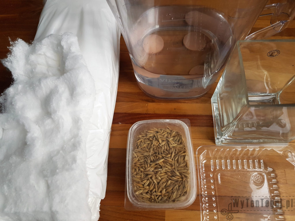 Preparation for growing oats for Easter