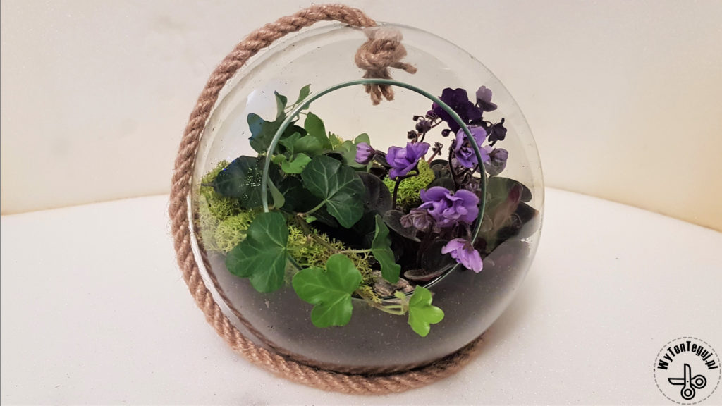 Forest in a jar or in a sphere