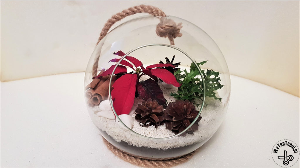 Forest in a jar in Christmas edition