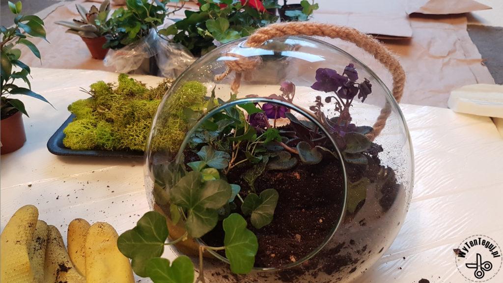 Planting in a jar
