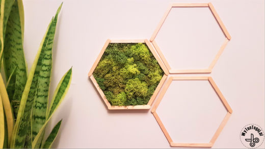 Hexagonal frame with reindeer lichen