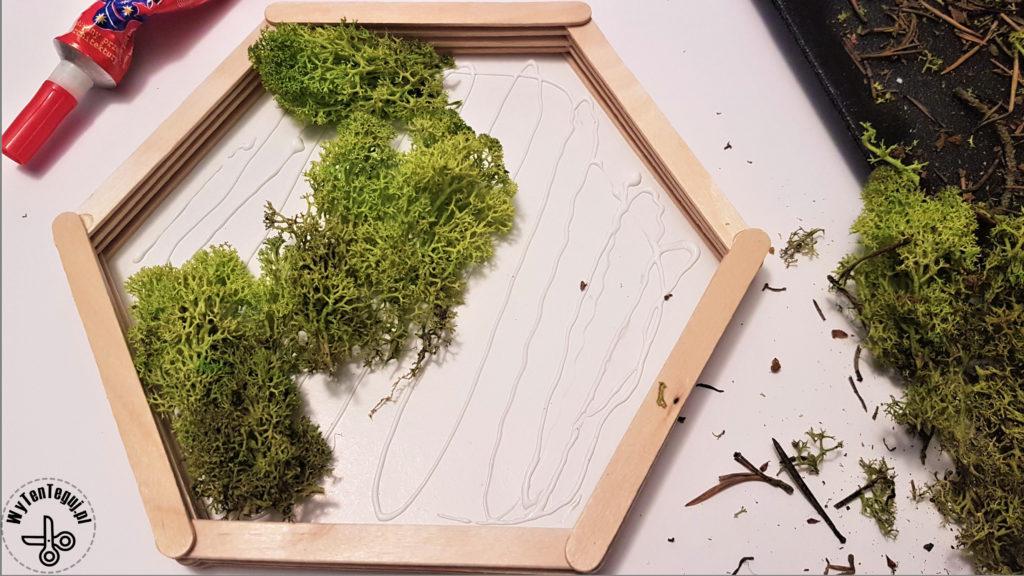 Gluing the reindeer lichen