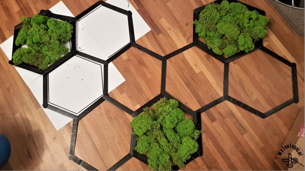 Hexagonal mosaic with reindeer moss