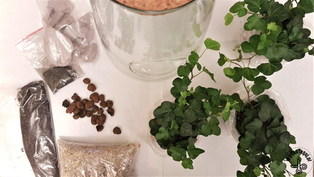 Supplies for modern forest in a jar of ovy