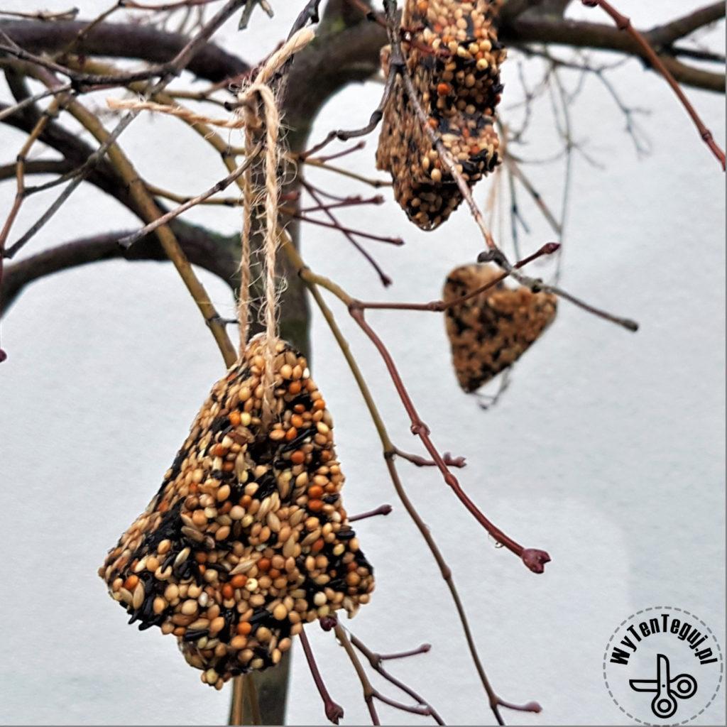 bird feeder cookies