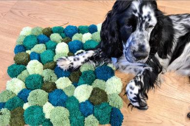 Dywanik z pomponów zaakceptowany przez psa