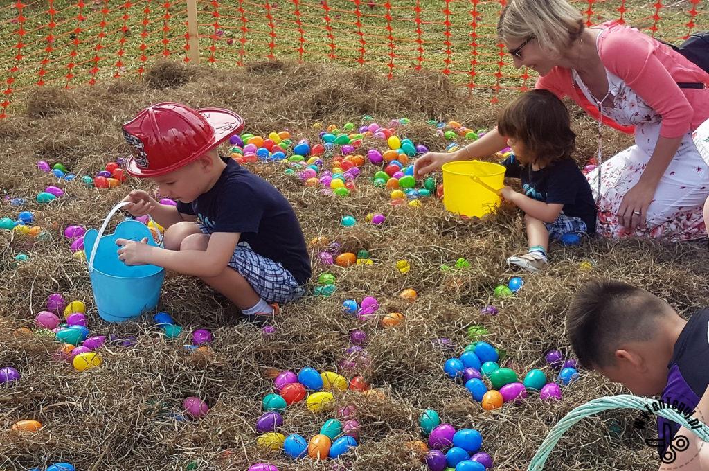 Polowanie na jajka w sianie