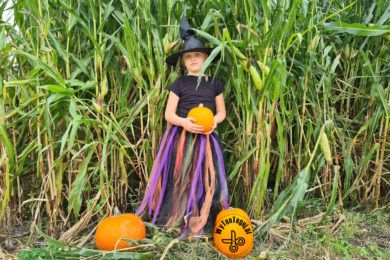 How to make witch tutu costume